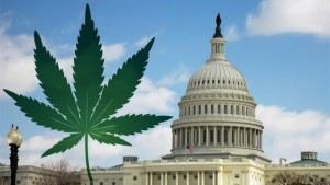 GreenWay-Delaware-Briefing-on-Federal-Obstruction-on-MMJ-Research